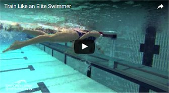 Speedo's Ultimate Guide to a Perfect Freestyle Swim Stroke!