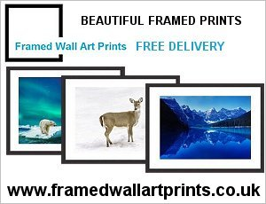 Framed Wall Art Prints